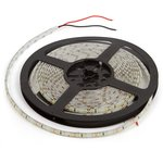 LED Strip SMD2835 (high-brightness, monochrome, cold white, 120 LEDs/m, 5 m, IP65)